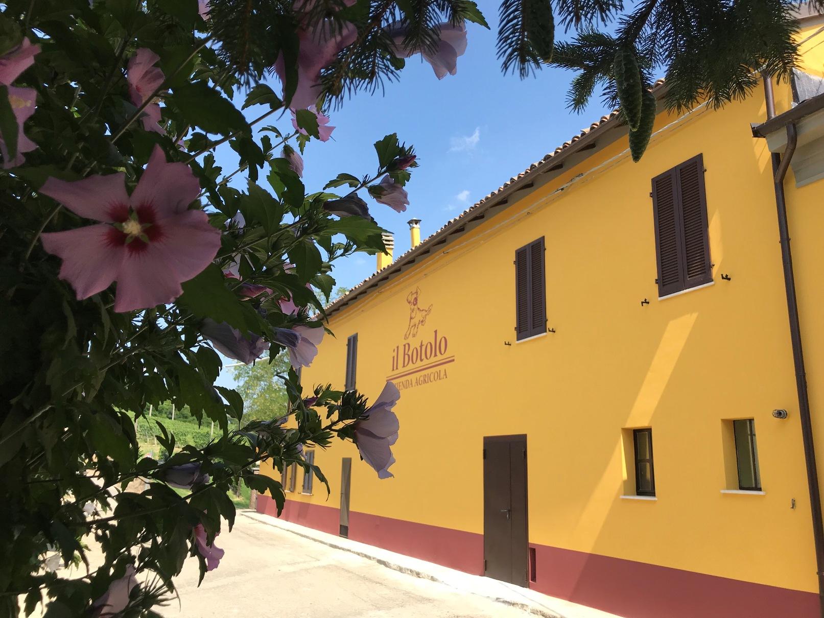 Tenuta il botolo Welcome to the Castle
